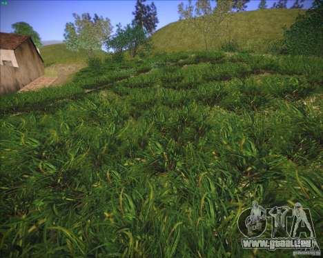 New grass pour GTA San Andreas