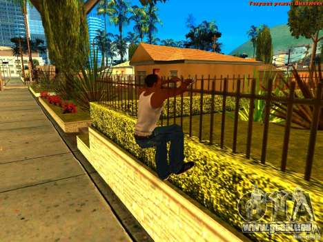 New Animations V1.0 für GTA San Andreas her Screenshot
