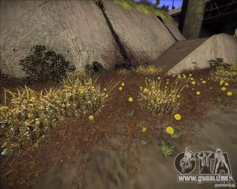 New grass für GTA San Andreas dritten Screenshot