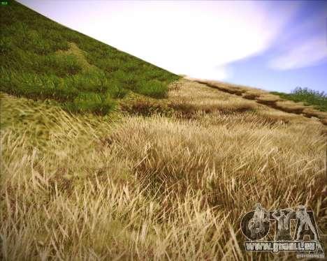 New grass pour GTA San Andreas deuxième écran