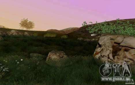 PoSSibLe Sa_RaNgE v3.0 pour GTA San Andreas huitième écran