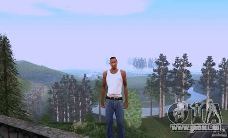 Carl Johnson can talk pour GTA San Andreas
