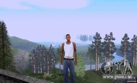 Carl Johnson can talk für GTA San Andreas