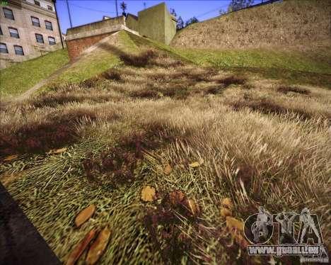 New grass pour GTA San Andreas quatrième écran