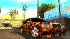 Mercedes-Benz E500 Leopard