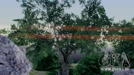 Caligraphic ENB v1.0 pour GTA San Andreas deuxième écran