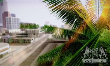 Reflective ENBSeries v1.0 pour GTA San Andreas deuxième écran