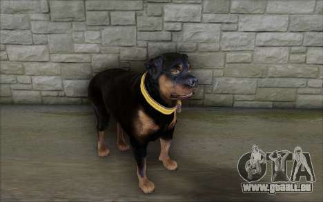 Rottweiler from GTA 5 pour GTA San Andreas