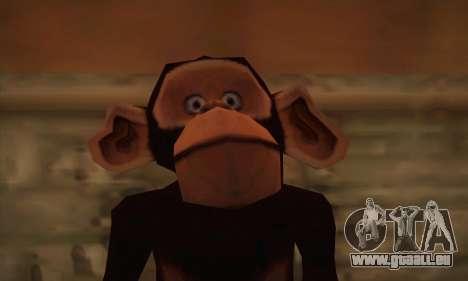 Chimp pour GTA San Andreas troisième écran