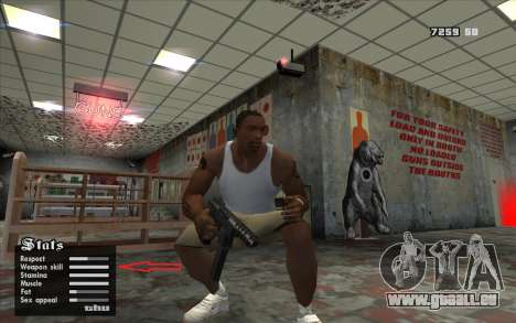 Geänderte weapon.dat für GTA San Andreas