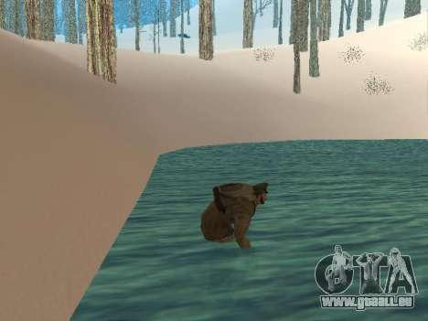 Rucksack 2.0 für GTA San Andreas her Screenshot