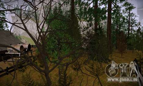 ENBSeries par Makar_SmW86 version Finale pour GTA San Andreas deuxième écran