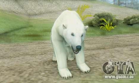 Polar Bear (Mammal) pour GTA San Andreas troisième écran