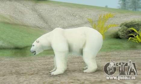 Polar Bear (Mammal) für GTA San Andreas zweiten Screenshot