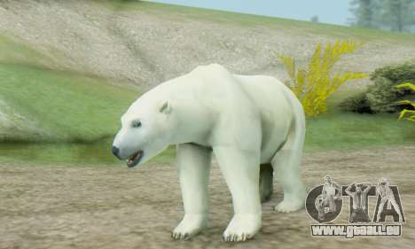 Polar Bear (Mammal) für GTA San Andreas
