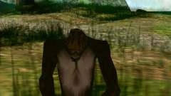 Sasquatch (Bigfoot) auf dem mount Chiliad
