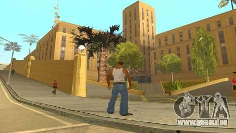 ColorMod v1.1 pour GTA San Andreas troisième écran