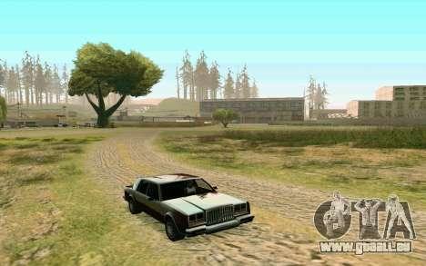 ENB pour les moyennes et faibles PC pour GTA San Andreas