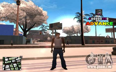 C-HUD Advance RP pour GTA San Andreas