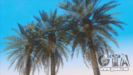Vanilla ENB Series pour GTA San Andreas cinquième écran