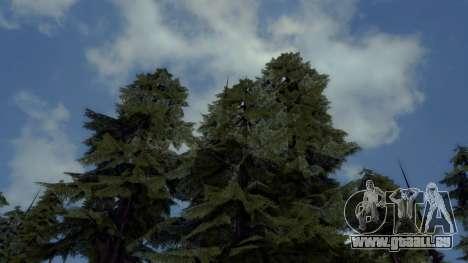 Natürliche und Realistische ENB für GTA San Andreas her Screenshot