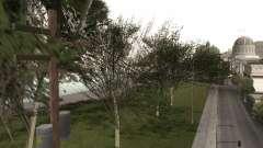 Une copie de l'original arbres