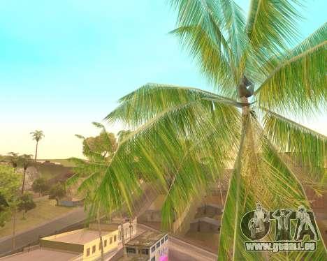 Des palmiers à partir de Crysis pour GTA San Andreas