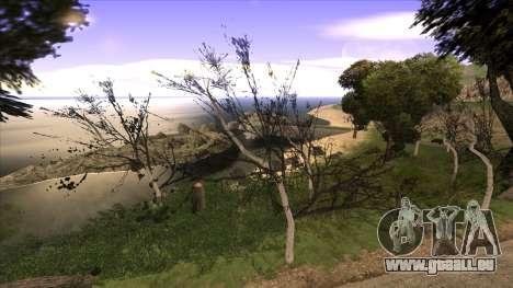 La construction du pont, et la forêt dense pour GTA San Andreas cinquième écran