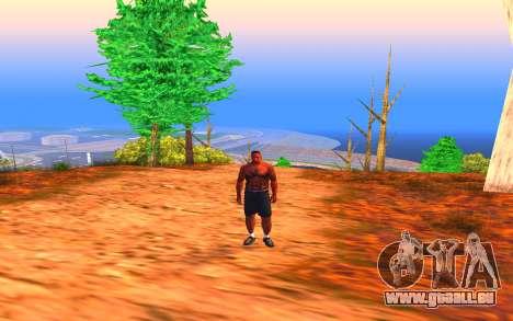 Summer Colormod pour GTA San Andreas troisième écran