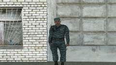 Riot Polizisten (Sommer)