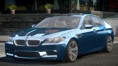 BMW M5 F10 GS V1.0